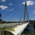 写真: マリン大橋