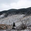 写真: 宮崎市でも初雪5
