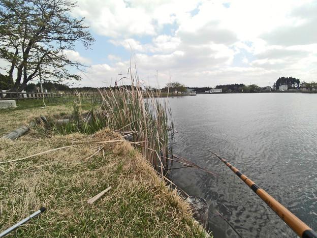 野池で釣り