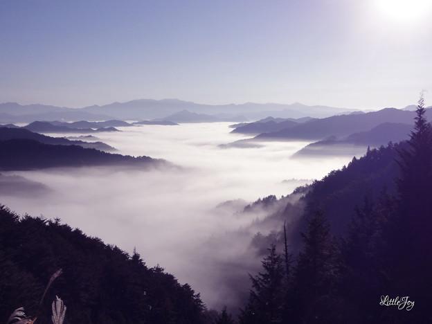 1011高野山付近朝霧
