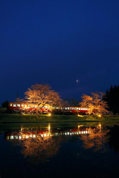 写真: 飯給夜桜朧月