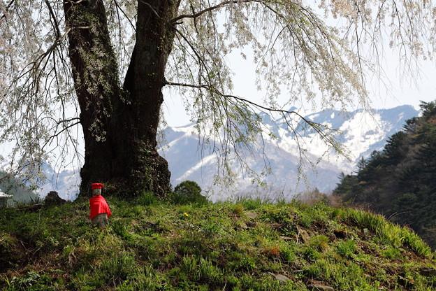 Photos: 地蔵桜と残雪の武尊