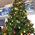 写真: 空港クリスマス