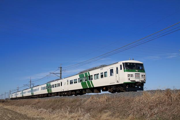 Photos: 快速成田山初詣ぐんま号9823M