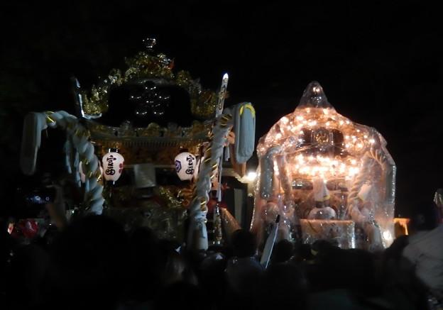 写真: 17-英賀神社-0221