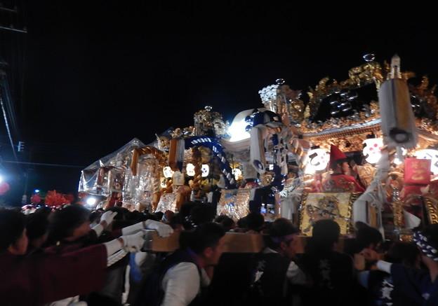 写真: 17-英賀神社-0229