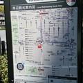 写真: 20170419_周辺観光案内図