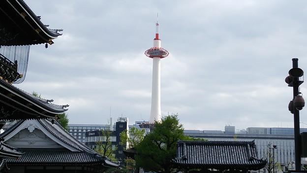写真: 20170419_京都タワー_1759