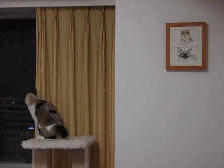 モモラテの絵を飾りました。
