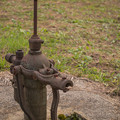 井戸を撮ったつもりが、上に蜻蛉が留まってた