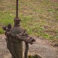 Photos: 井戸を撮ったつもりが、上に蜻蛉が留まってた