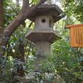 熱田神宮にて・2