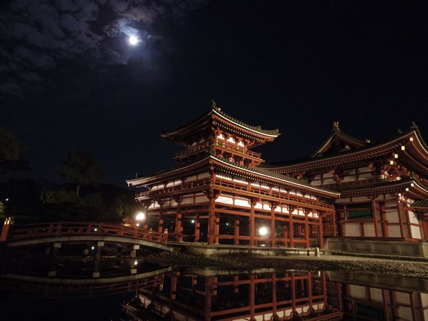 月夜の鳳凰