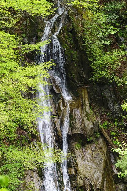 西沢渓谷をあるく。