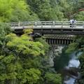 写真: 猿橋1