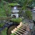 写真: 石上神宮