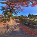 Photos: 奈良公園 紅葉〈5〉 360度パノラマ写真