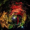 森町 小国神社 紅葉 赤橋付近 ライトアップ Little Planet