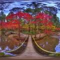 森町 小国神社 紅葉 360度パノラマ写真(1)