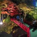 写真: 森町 小国神社 紅葉 赤橋付近 ライトアップ (1)