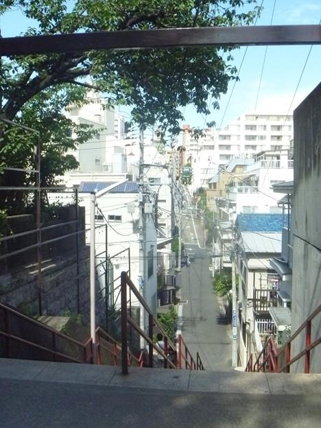 須賀神社前階段上(昼)