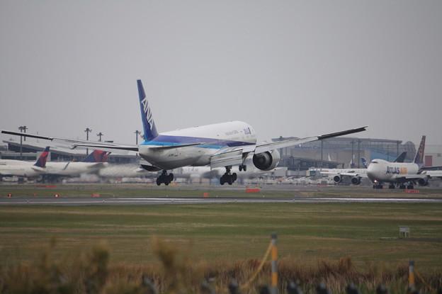 全日空 ANA ボーイング777-300ER JA735A (10)