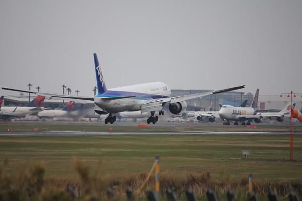 全日空 ANA ボーイング777-300ER JA735A 着陸