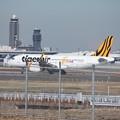 写真: タイガーエア台湾 エアバスA320-200 B-50008 (1)