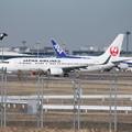 Photos: 日本航空 JAL ボーイング737-800 JA312J