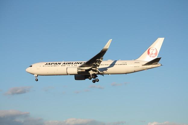 日本航空 JAL ボーイング767-300ER JA608J (1)