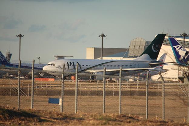 パキスタン航空