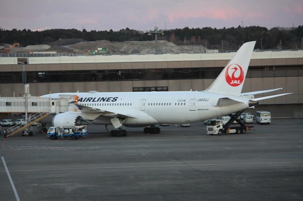 日本航空 JAL ボーイング787-8 JA832J