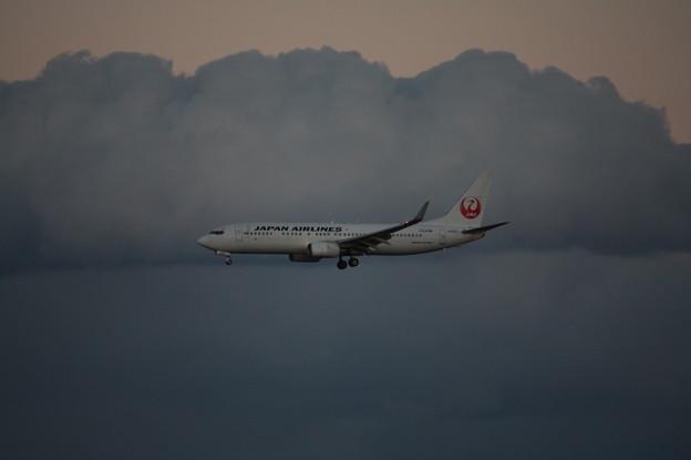 日本航空 JAL ボーイング737-800 JA320J