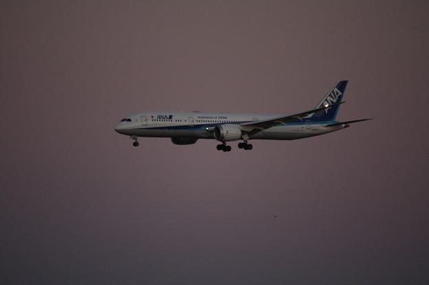 全日空 ANA ボーイング787-9 JA837A
