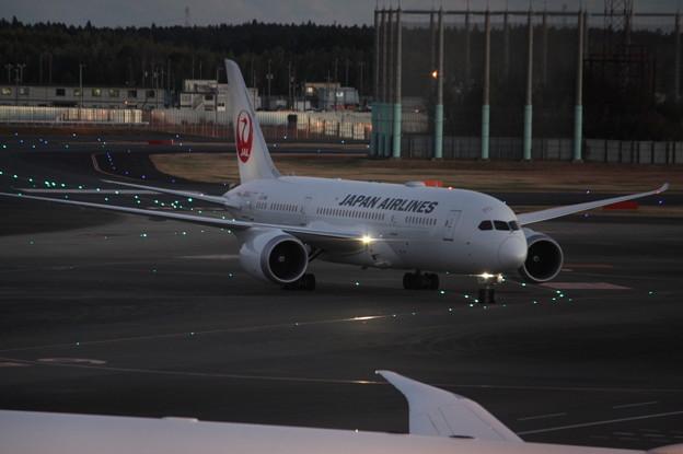 日本航空 JAL ボーイング787-8 JA845J