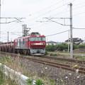 安中貨物 5094レ EH500-78牽引 (2)