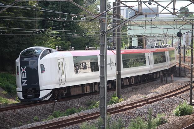 E259系Ne006編成 成田エクスプレス