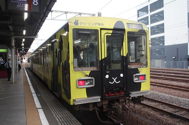鹿島臨海鉄道6000形6012 「クリーニング専科」ラッピング