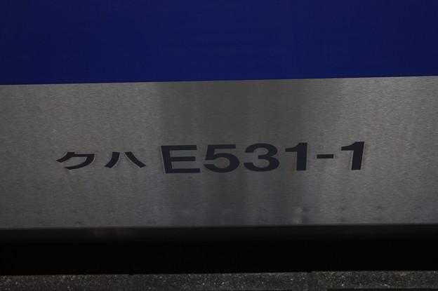 クハE531-1 車番表記 外