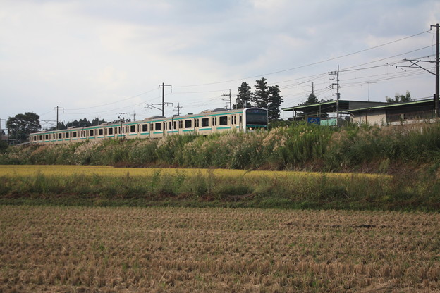 稲刈り後の田んぼを行くE501系