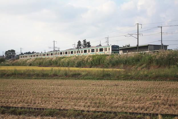稲刈り後の田んぼを行くE501系 (1)