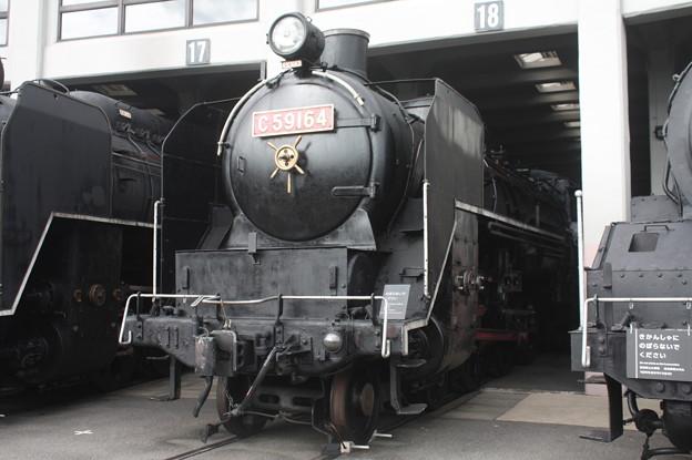 C59 164