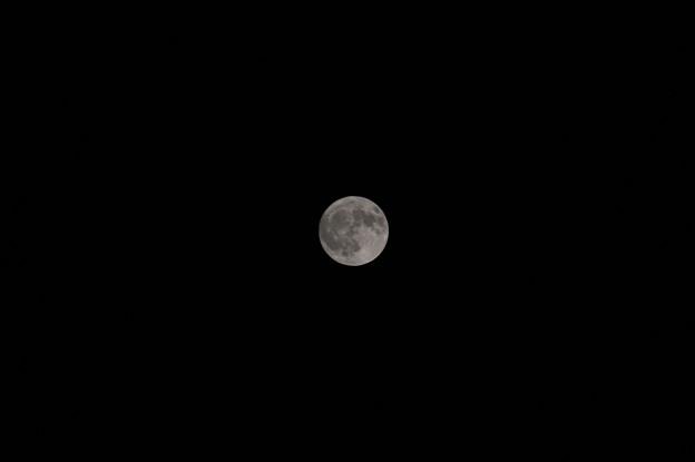 十五夜の月 (1)