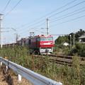 安中貨物 5094レ EH500-81牽引 (3)