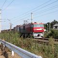 安中貨物 5094レ EH500-81牽引 (4)