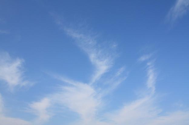秋の空 (1)