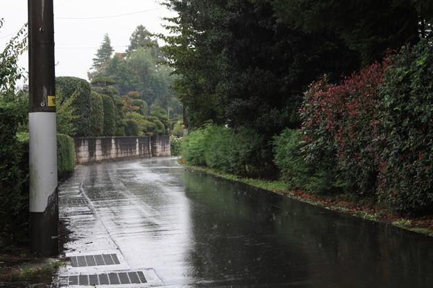 雨が降っている光景