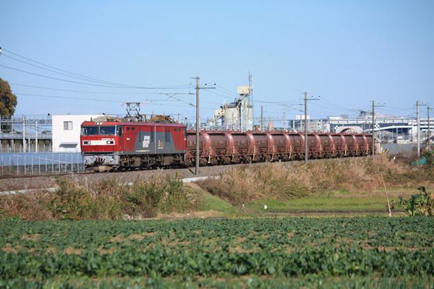 畑の中を行くEH500-14牽引5094レ安中貨物 (5)