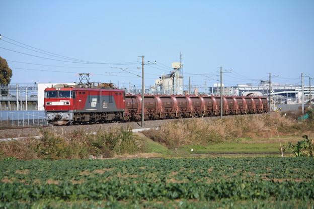畑の中を行くEH500-14牽引5094レ安中貨物 (6)