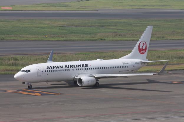 日本航空 JAL B737‐800 JA348J